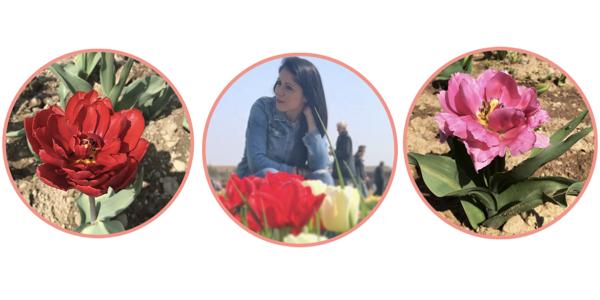 tulipani italiani myserendipity